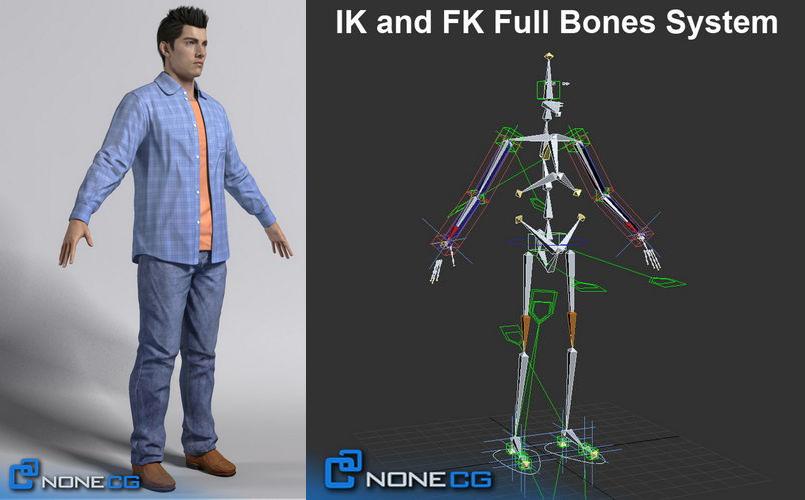 modelo anatómico 3D